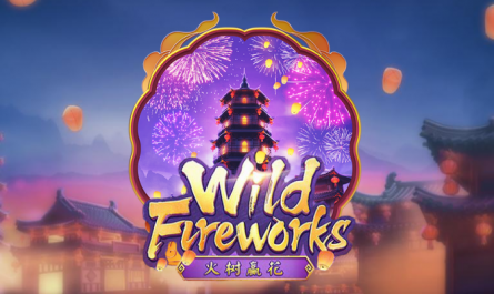 Wild Fireworks เทศกาลดอกไม้ไฟบาน
