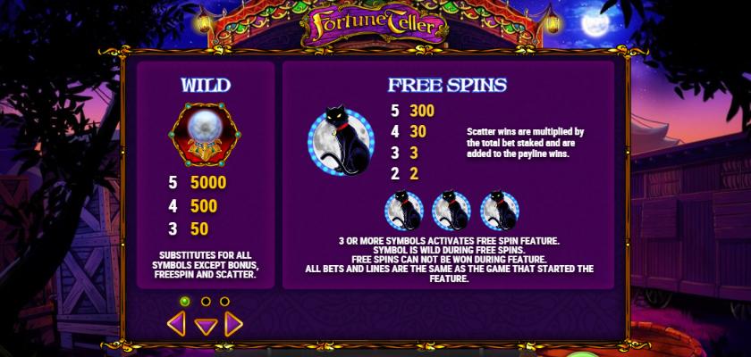 Fortune Teller - features